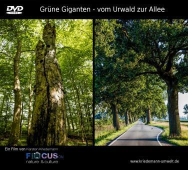 DVD / Grüne Giganten - vom Urwald zur Allee